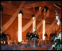 Uniquely DC, the Washington DC premier special events production company presents your White Nights Gala - a beautiful  room transformation with fabric columns, lush foliage, gentle draperies and much more.