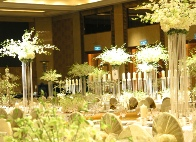 Uniquely DC - Special Events and Theme decor rentals in Washington DC